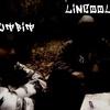 LincooL-SutbiT