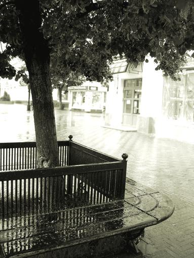 Утро, дождь1