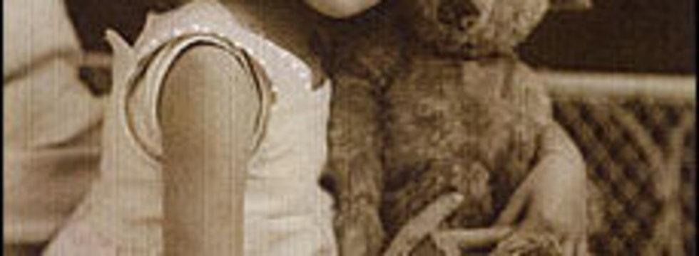 1374507516_antique-teddy-bear_banner