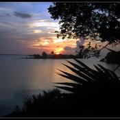 1306325106_bahamas00_new_weekly_top