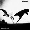 Rayphonic