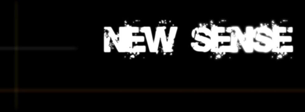 1374524325_new_sense_2010_banner