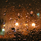 1313717802_rainy_window_new_weekly_top