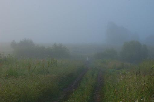 Вышел-кто-то-из-тумана.jpg