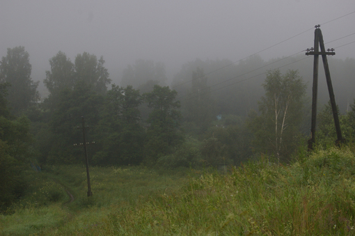 Овраг в тумане.jpg