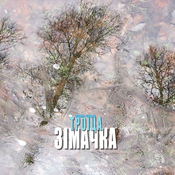 1320342288_ethnotriotroitsa_1887547_cover_new_weekly_top