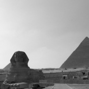 1322445082_sphynx_bw_new_weekly_top