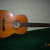 wolf159-guitar