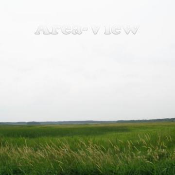 Area-View WMRI