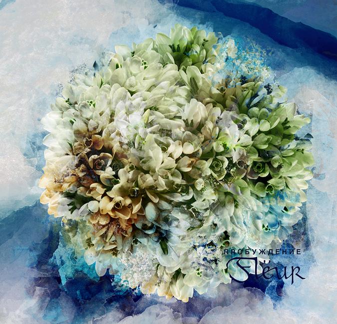 Fleur_Vakna_..