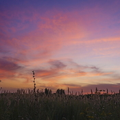 1330445281_sunset_is_in_steppe