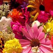 1331228864_flowers_new_weekly_top