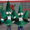Greensheett