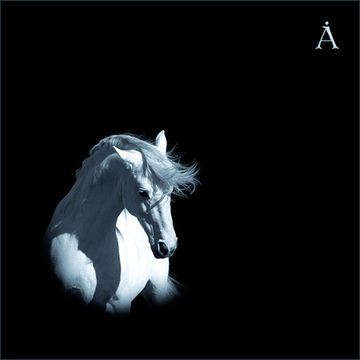 Лошадь Белая Аквариум I Борис Гребенщиков I БГ