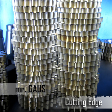 Cutting Edge Mr. Gaus