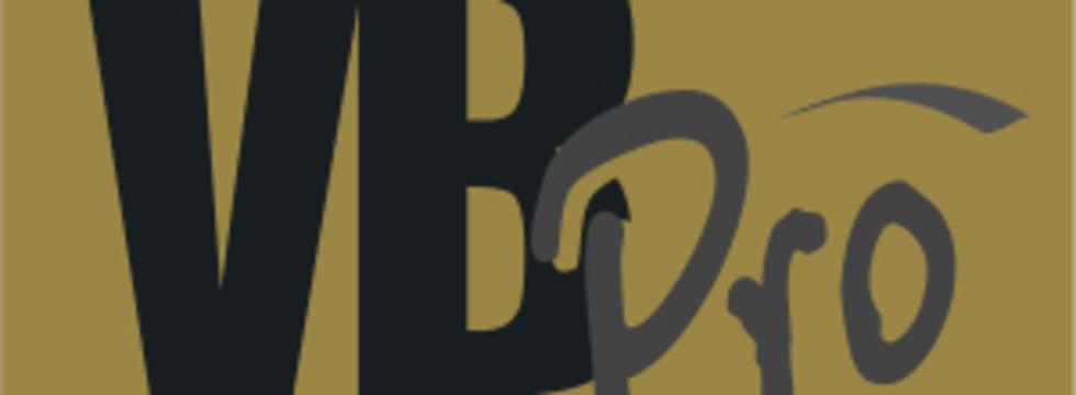 1374508652_vb_pro_bronza_crop_banner