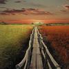 silent-path