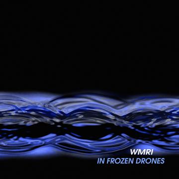 In Frozen Drones WMRI