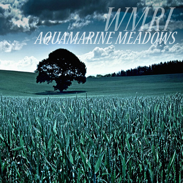 Aquamarine Meadows WMRI
