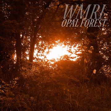 Opal Forest WMRI