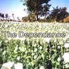 TheDEPENDANCE