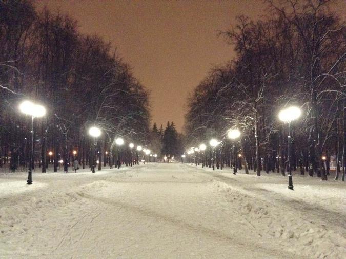 Петровский Парк (Москва)