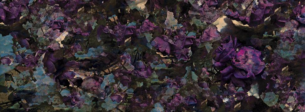 Fleur Все Альбомы Скачать Торрент - фото 7