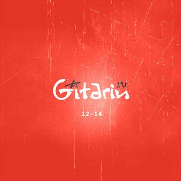 12-14 Проект Гитарин