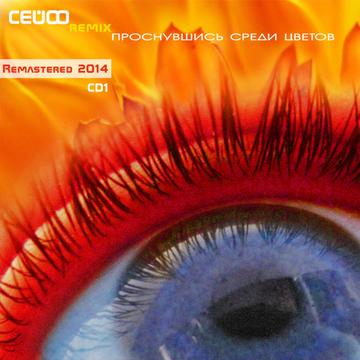 Проснувшись Среди Цветов (Remastered 2014) CD1 Сейф