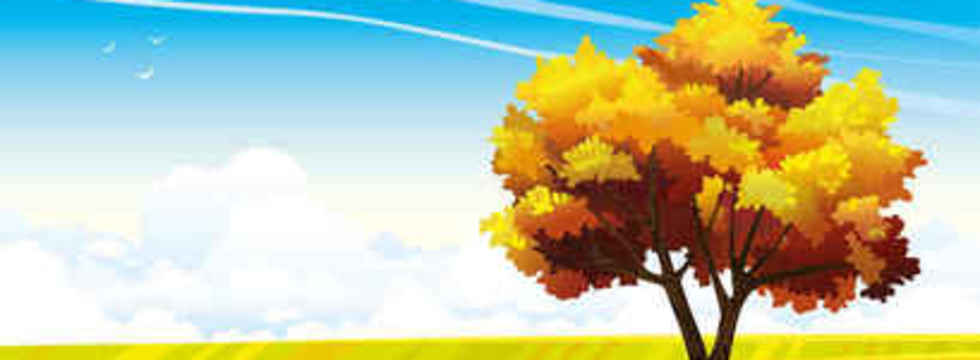 1447911933_cartoon-landscapes-trees-86121_banner