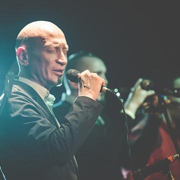 PHOTO Optimystica Orchestra