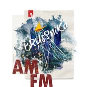 AM/FM // 2017