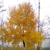 rudkovskiiandrey