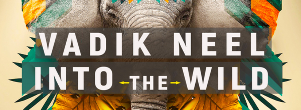 1522839083_into_the_wild_banner
