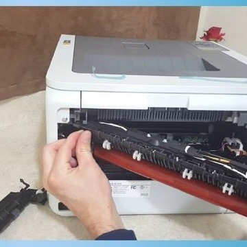 How Can I Resolve Fuser Error 50.2 on HP Printers - Amelia Sampson