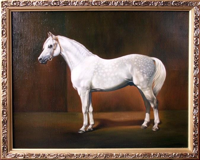 Арабская_лошадь