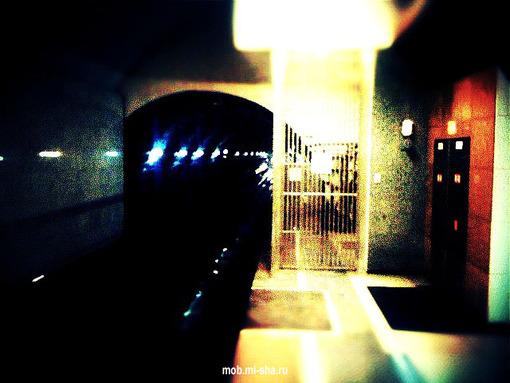 Московское Подземелье XIV