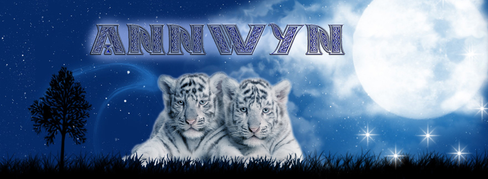 1374538830_annwynpicnewmoved_banner