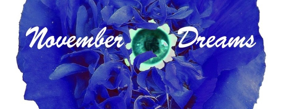 1374513647_gotovoe_logo_november_dreams_banner