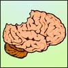 mozgest