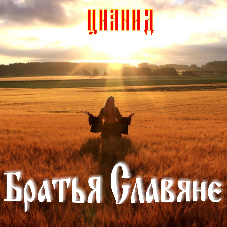 Братья славяне картинки