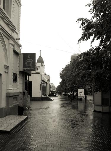 Утро, дождь 2