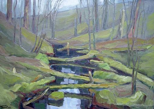 Ручей впадающий в озеро Коробожа