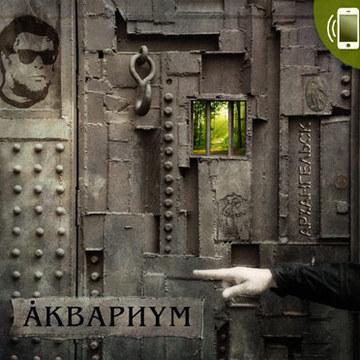 Архангельск (phone version) Аквариум I Борис Гребенщиков I БГ