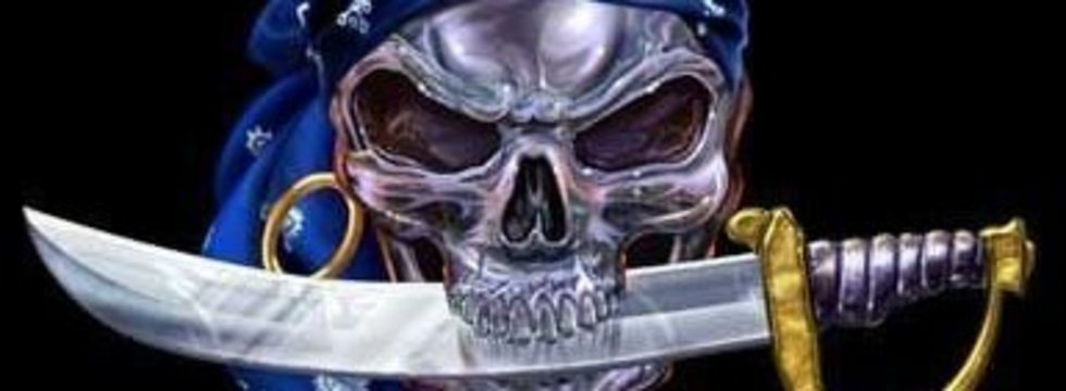 1374515397_1244806114_skull_pirate__captain__banner