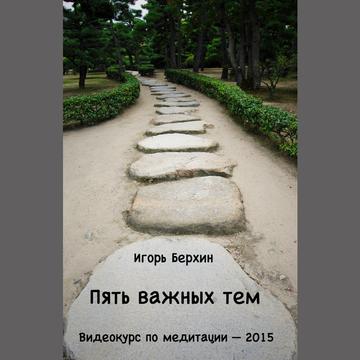 Пять важных тем. Видеокурс по медитации 2015. Игорь Берхин