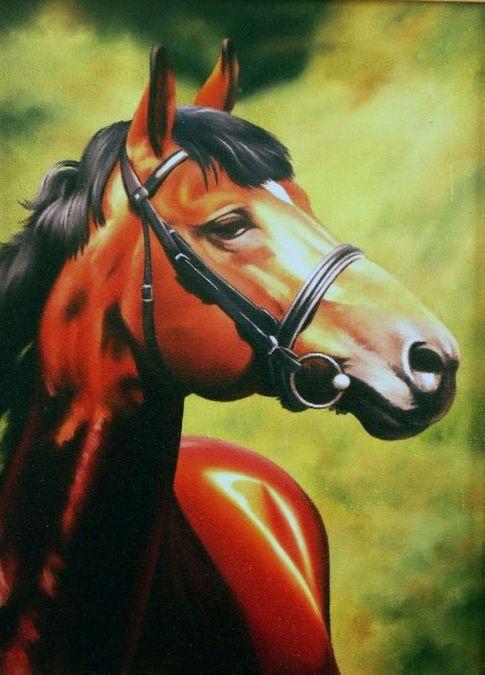 Красный конь (Аккорд)