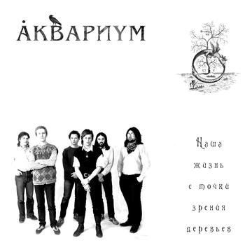 Серые камни на зелёной траве Аквариум I Борис Гребенщиков I БГ
